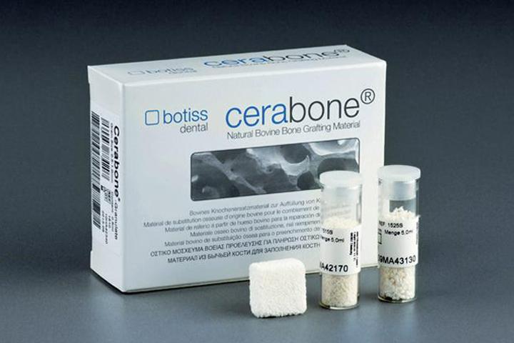 Cerabone block