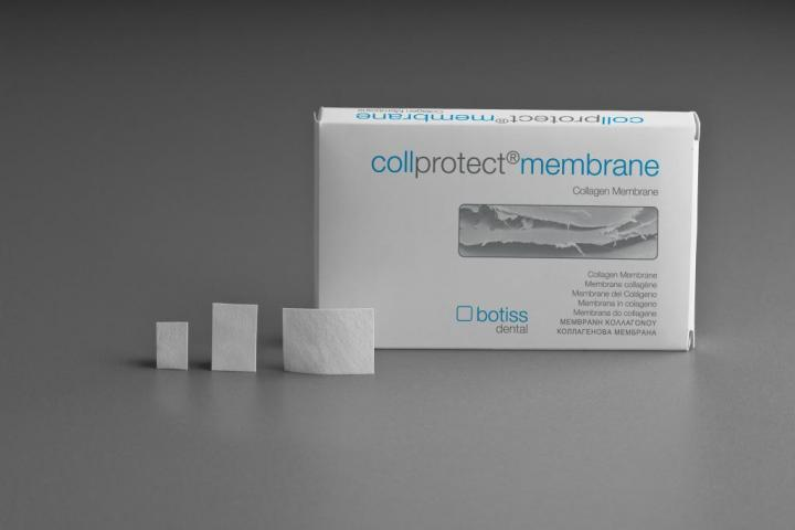 Collprotect membrane